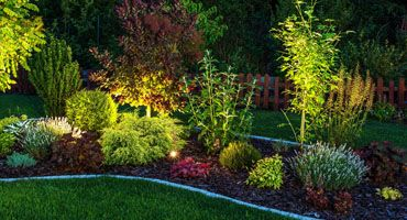 The Benefits of Professionally Installed Landscape Lighting