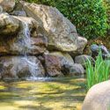 backyard water feature landscaping